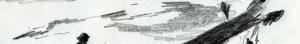 03_Piroguiers Canal du Mozambique croquis bandeaux