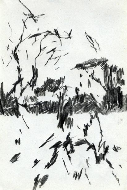 06_Dame aux oiseaux copie-1