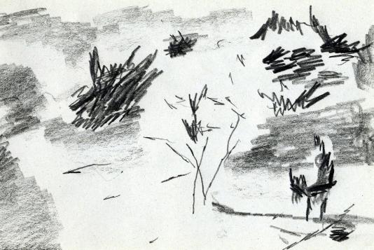 07_Amandier en fleurs et l'ânier copie
