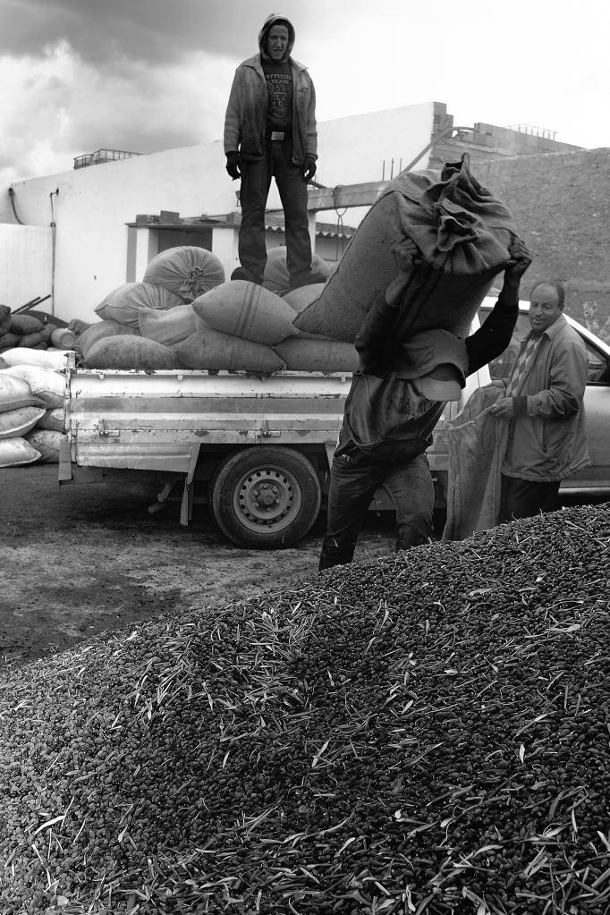 26 Déchargement des olives à dos d'homme