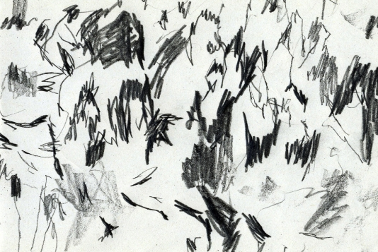 34_Fête de Django Reinhardt copie