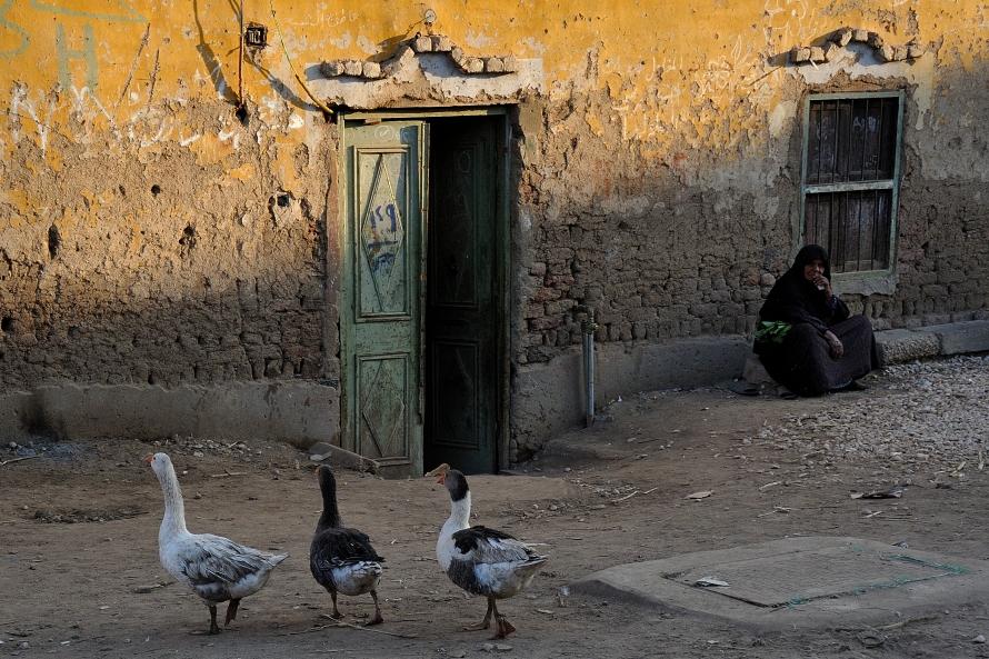 10 Egypte 2011 DSC_8481