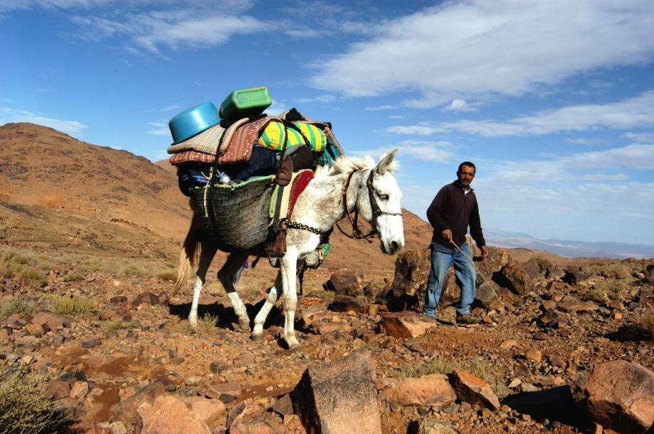 Maroc Trek 2004 Sélection - 073