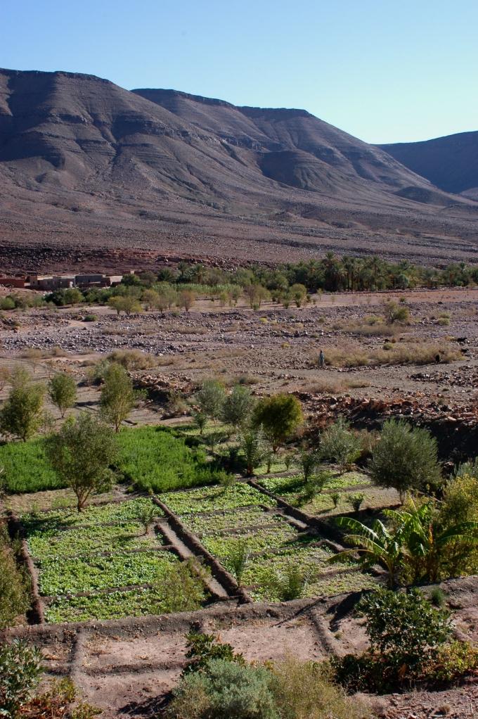 Maroc Trek 2004 Sélection - 279
